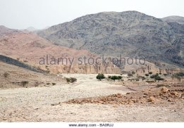 a-dried-up-river-bed-during-a-drought-dana-jordan-ba0rjj